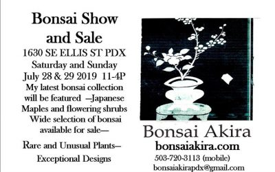 Summer Bonsai Show and Sale–At Bonsai Akira Studio!